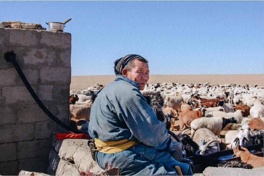 Economia Mongola: pastorizia uno stile di vita in via di estinzione